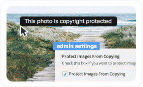 Wordpress theme with photo and image copy protection